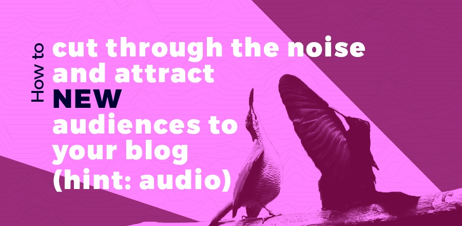 How to cut through the noise and attract new audiences to your blog (hint: audio) header